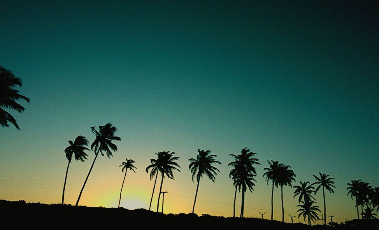 Sunset 🌄🌴 Beach Paradise Paradise Beach Nature First Eyeem Photo
