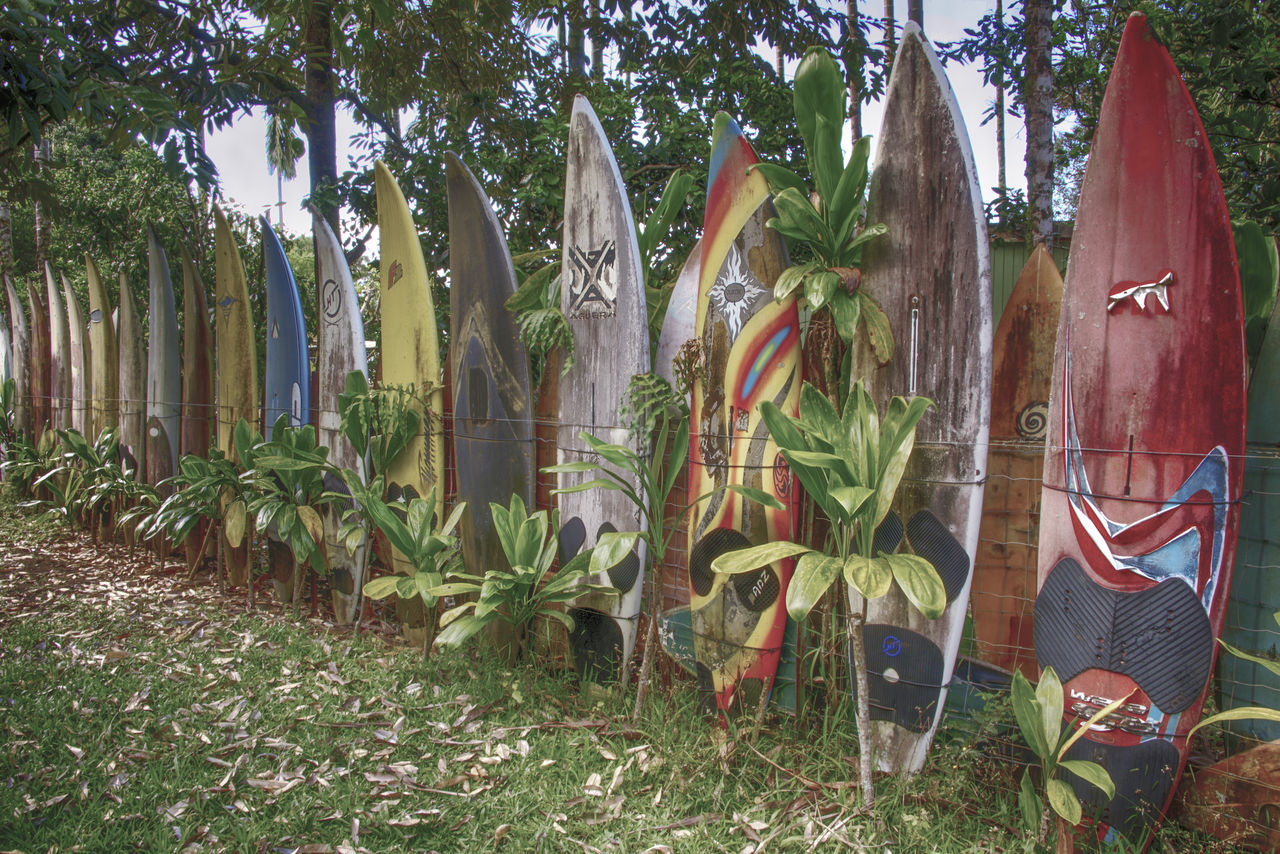 Surfboard Fence in Maui, Hawaii Fence Hawaii Maui Road To Hana Surface Level Surfboard Surfboard Fence Travel Destinations Tropical Tropical Paradise Unique