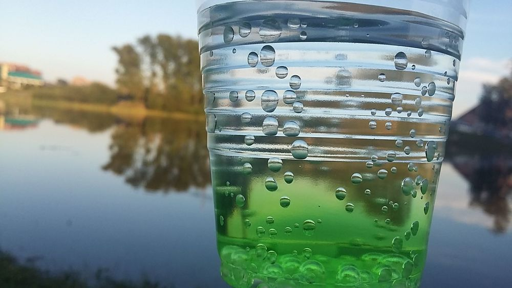 EyeEmNewHere Reflection Drinking Glass Drink Cold Temperature Water No People Close-up Ice Nature Freshness Tree Outdoors Day Grass Baikal.Russia.Siberia.my Motherland Forest Russia Siberia Beauty In Nature Green Color Nature Sky