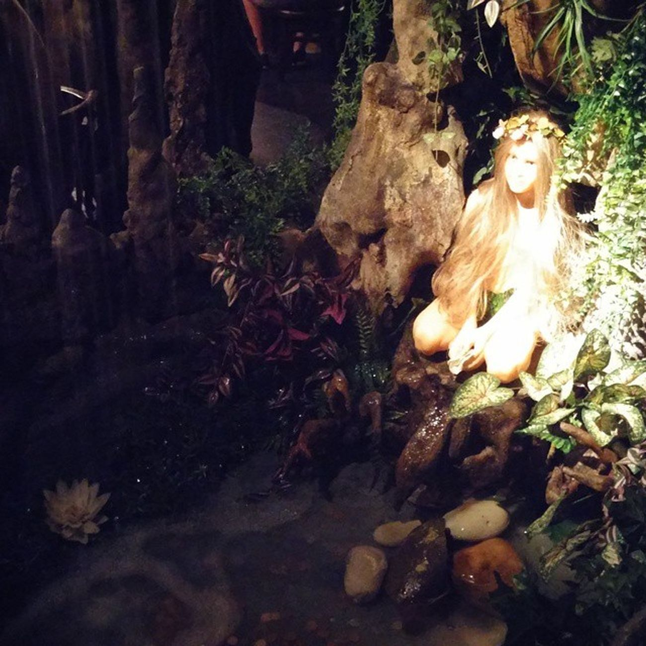 Elboscdelesfades Fairy Fairyforest Keiju Keijumetsä Barcelona Bcnexploradores Bcnexplorers Fairypond