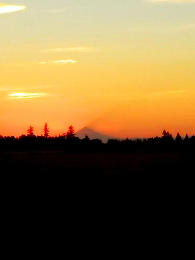 Taking Photos Check This Out Hello World Enjoying Life My Take On Life An Original What You Make It  Color Portrait Takeoverinspiration Its All In The Details Steamzoofamily Eye For Photography Color Of Life Natures Diversities Color Palette Eyeemphoto Birds Eye View Picoftheday The Portraitist - 2016 EyeEm Awards Colorful Creativity Createdaily Mt Hood Oregon Nothing Else Matters Sunrise_sunsets_aroundworld