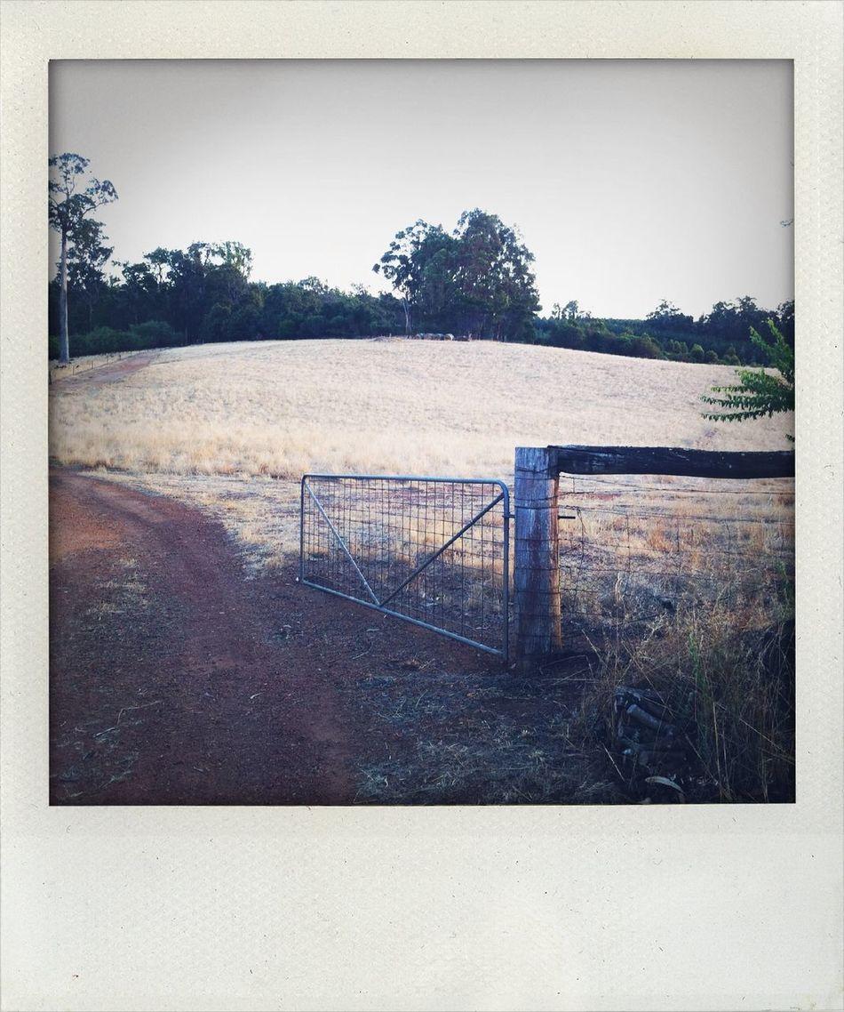 At Manjimup West Australia