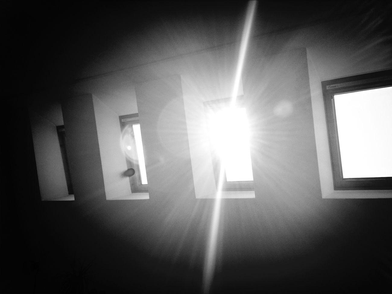 Blackandwhite Morning Lens Flare