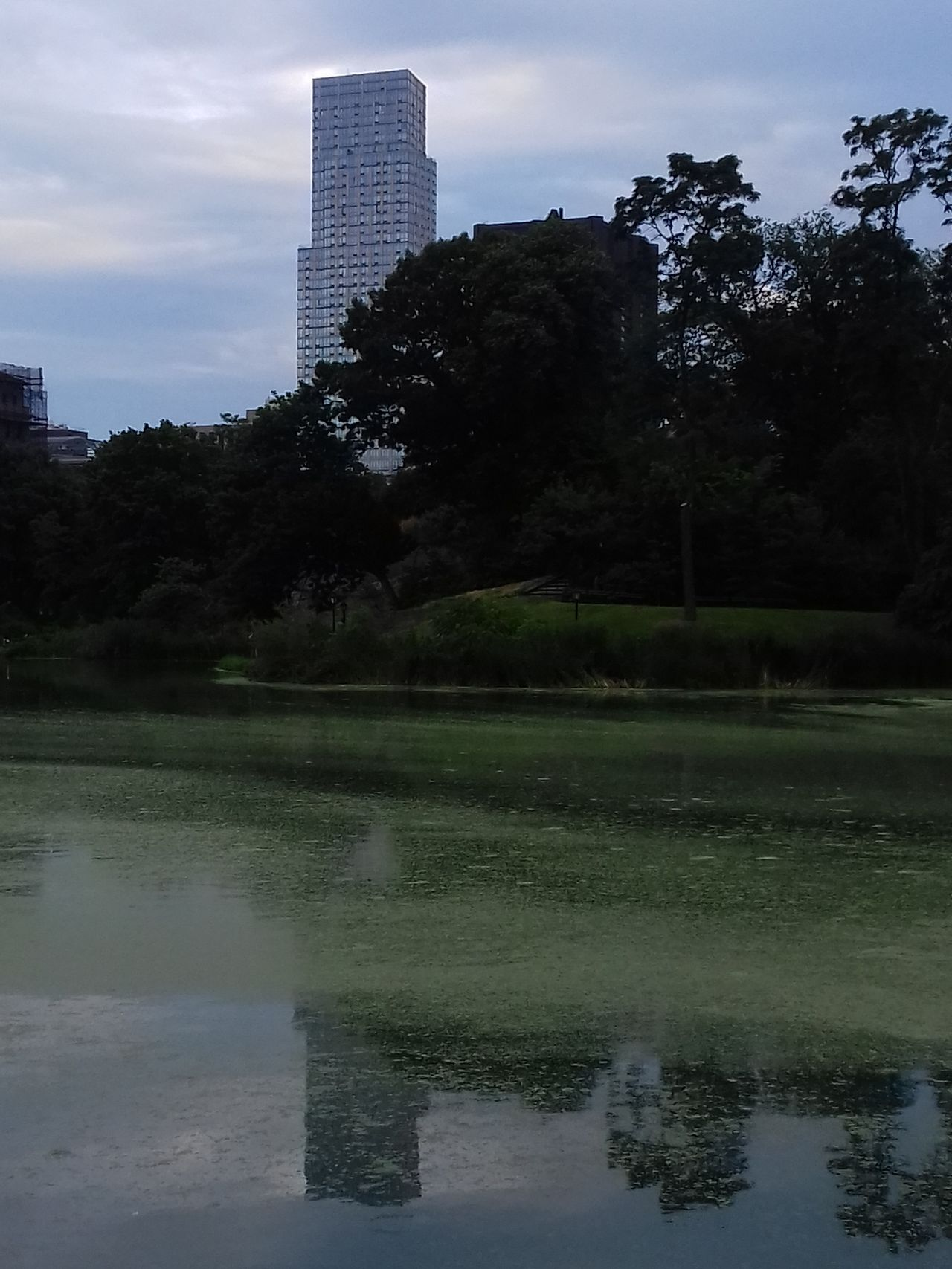 view,reflection, water,wonderful new york city,central park