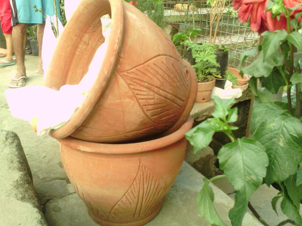 Pots Human Body Part Philippines Streetphotography Streetphotographer Plants Pottedplants