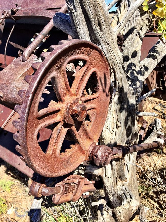 """""""Busted Gear"""" Broken main gear on an abandoned piece of farm machinery remaining from the glory days when Cedarvale, NM, USA was the largest pinto bean producing area in America during the 1920's. Farm Machinery Farmequipment PintoBeans Abandoned Places Abandoned Farm Rural Rural Scenes Rural America RuralTreasures  Rural Decay Ruralphotography Rural Exploration Farmland Farming Gears"""