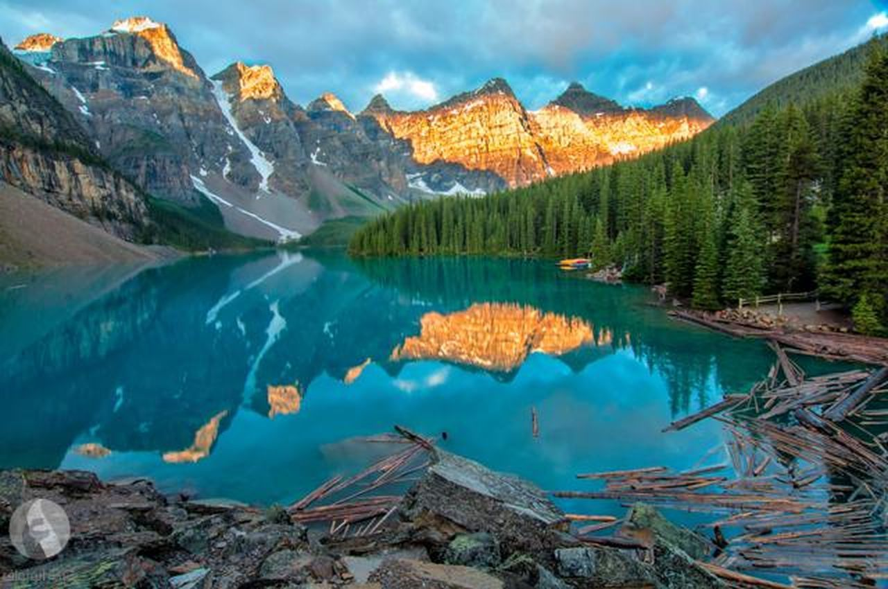 mountain, lake, scenics, mountain range, wilderness, nature, reflection, outdoors, forest, landscape, water, pine tree, beauty in nature, mountain peak, cloud - sky, no people, snow, blue, travel destinations, day, moose, sky, tree