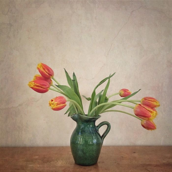 Tulips Green Vase Fine Art Photography Flowers Red Yellow Cracked Paint Still Life