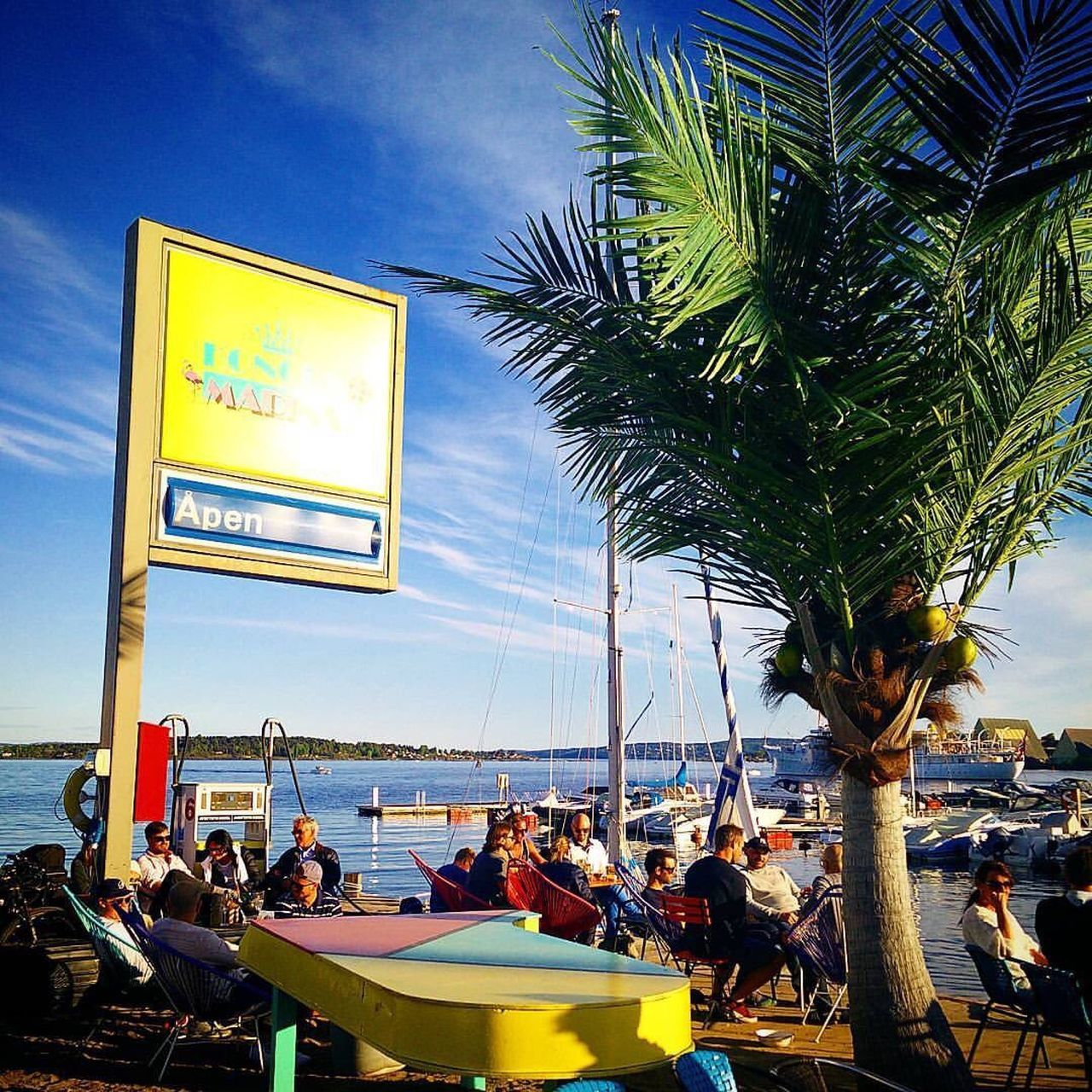The Street Photographer - 2016 EyeEm Awards Week On Eyeem Palm Trees Norway Oslo Marina Kongenmarina Sailboats Enjoying Life Wine Sky And Clouds Blue Sky Outdoors Motion Hanging Out