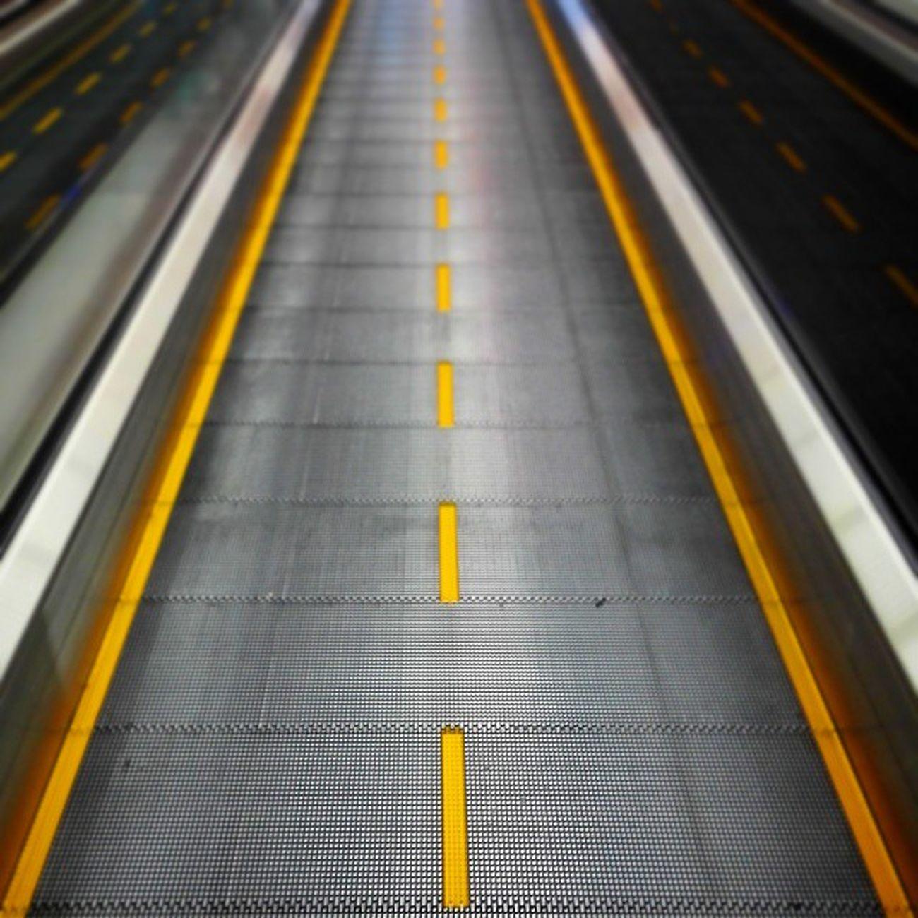 Roadtolisbon Yellowline Dubai