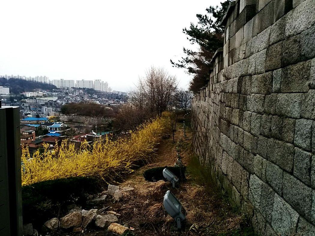 City Wall 서울 한양 도성길