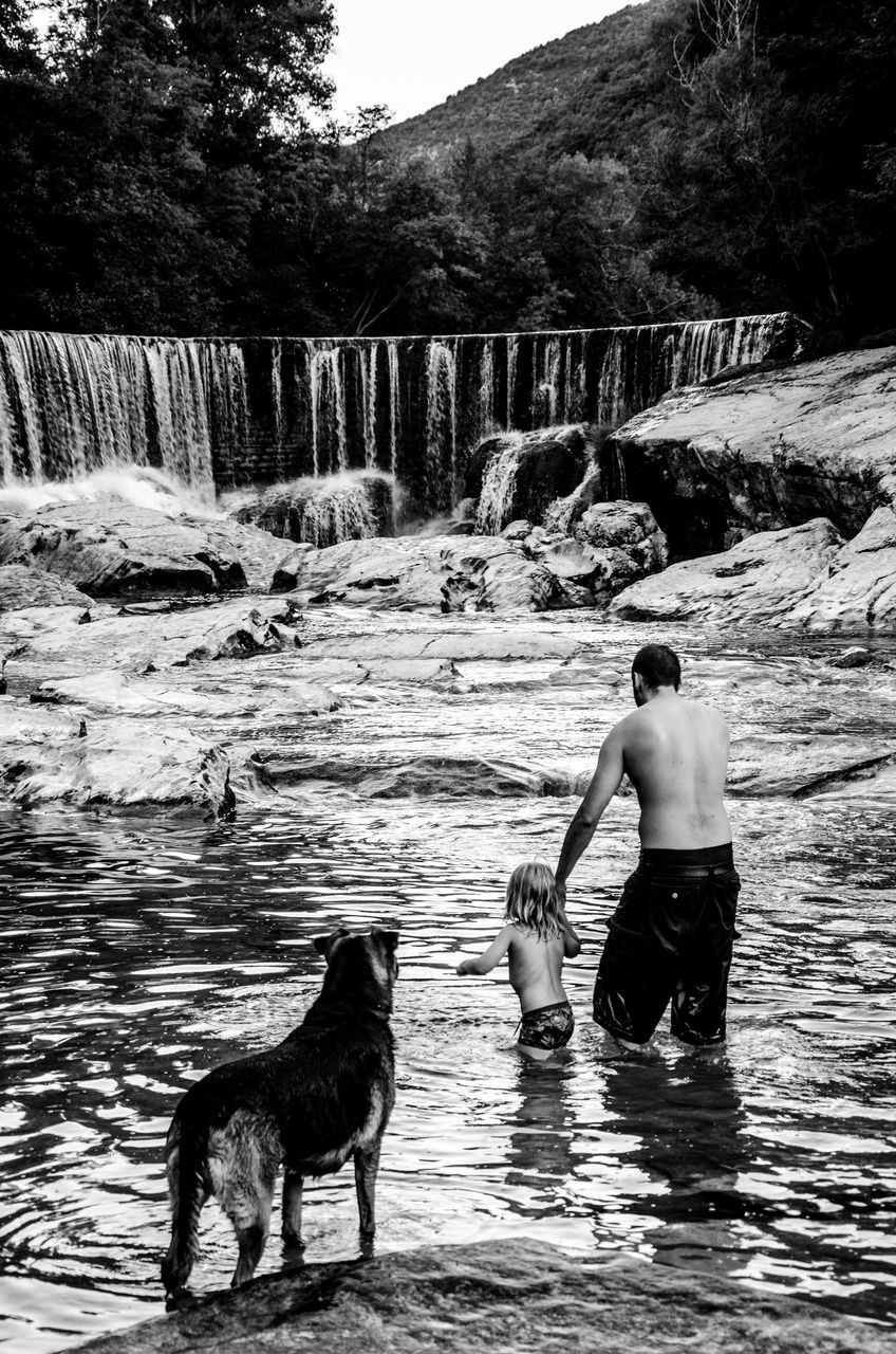 pets, dog, water, domestic animals, real people, one animal, shirtless, motion, one person, mammal, day, outdoors, river, leisure activity, full length, standing, nature, young adult, lifestyles, men, waterfall, people