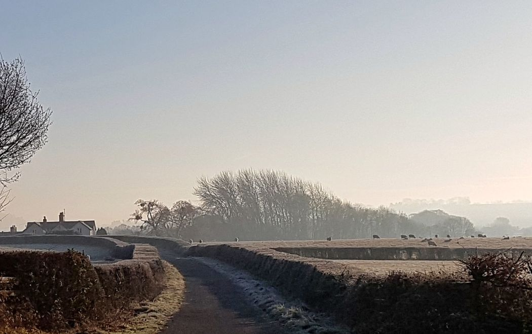 Frosty morning ❄️ Frosty Mornings Frost Frosty Morning Frosty Day Frosty Days Frosty Nature Winter Wintertime Winterscapes Herefordshire Hereford England🇬🇧 Landscape Landscape_photography Landscape_Collection Tranquil Scene Nature Nature On Your Doorstep