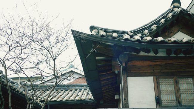 Korean Style House Korean-style House Cold