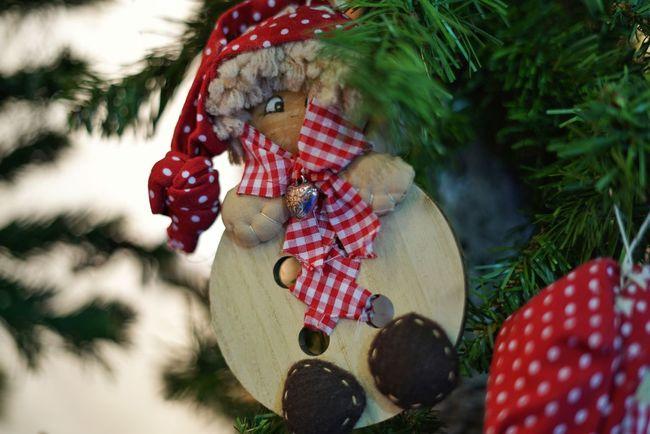 Leisure Activity Christmas Ornament Red 42mpx Mark2 Sony A7 Mark Ii Sony A7rm2 Homeworks Pupazzi Stoffe Fiera Bergamo