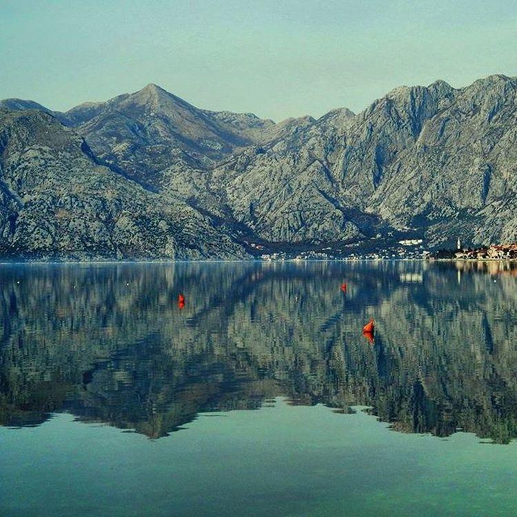 Bokokotorskizaliv Bokabay Adriaticsea Jadran Nature Letsgomontenegro Montenegrowildbeauty Bucketlistadventures