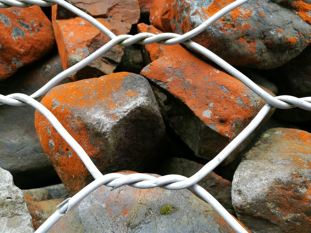 Metal Close-up Rock Lichen On A Rock