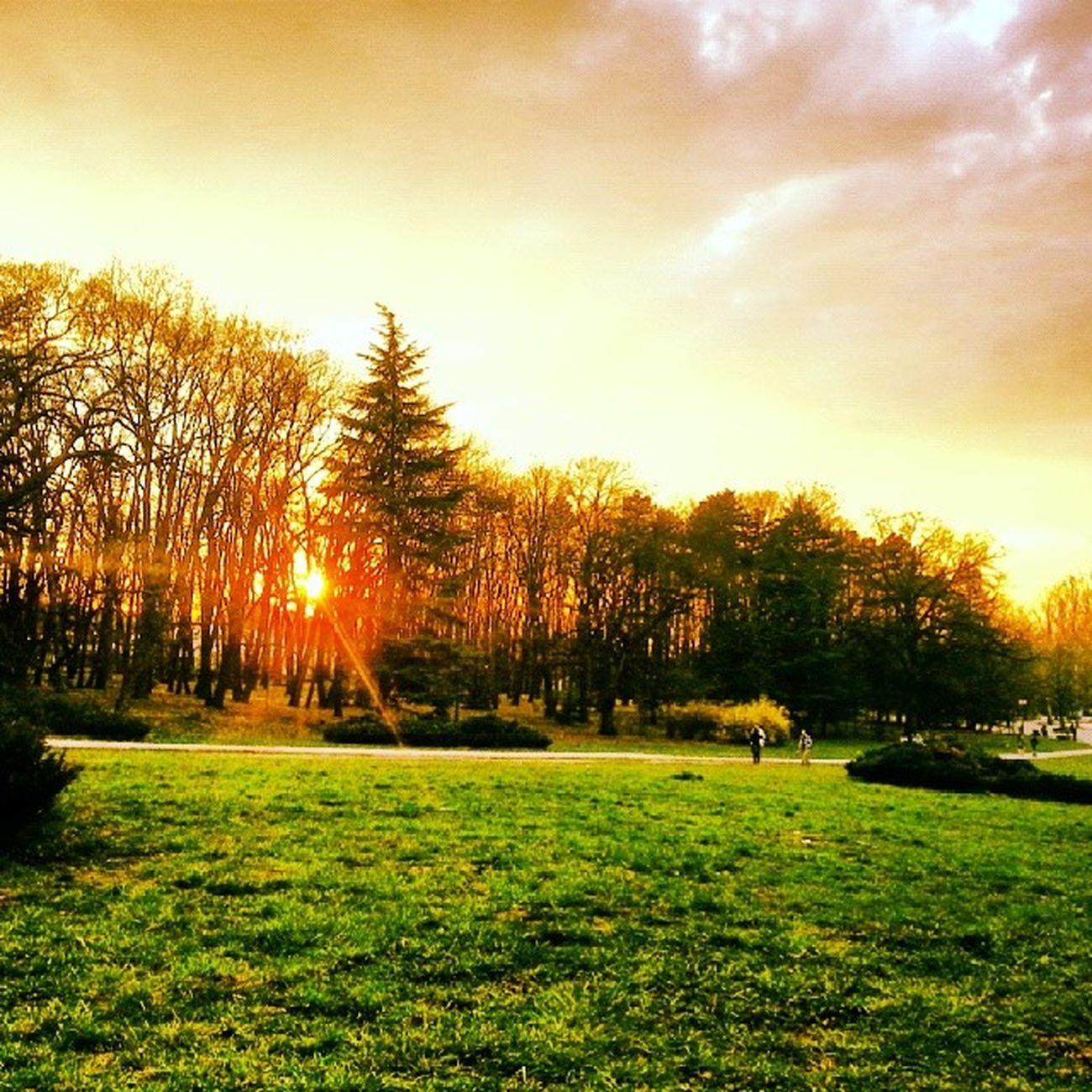 Sunset Park Spring Borisova gradina
