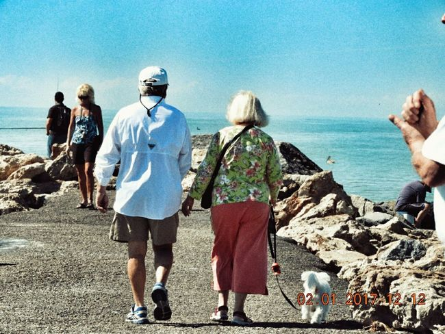Rear View Sea Full Length Day Real People Outdoors People Togetherness Beach Clear Sky Lieblingsteil EyeEmNewHere Uniqueness Waterfront Sky Lovers Old People Snow Birds Love Is In The Air Couples❤❤❤ Couples In Love Miles Away