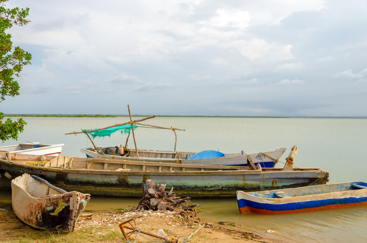 Old canoes on the shore of a lagoon in Camarones in La Guajira, Colombia Beauty In Nature Boat Camarones Canoes Colombia Environment Flora Green La Guajira Lagoon Lake Landscape Natural Nature Nature Outdoors Paddle Preserve Recreation  Reserve Riohacha Swamp Trees Water Wetlands