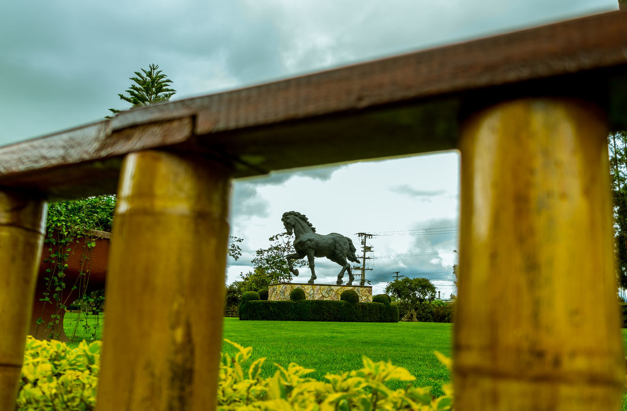 statue, horse, sculpture, art and craft, human representation, history, architecture, built structure, low angle view, day, sky, cloud - sky, outdoors, architectural column, no people, nature, building exterior, tree, mammal