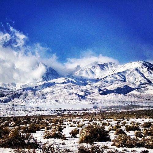 Jw Afb Bigpineca Owensvalley snowed cold purplengoldwillknockyoucold