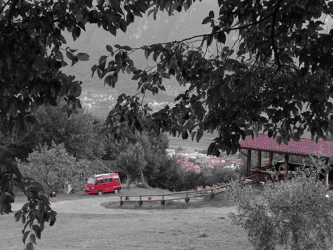 Vintage Cars Summer Lake Como Lake