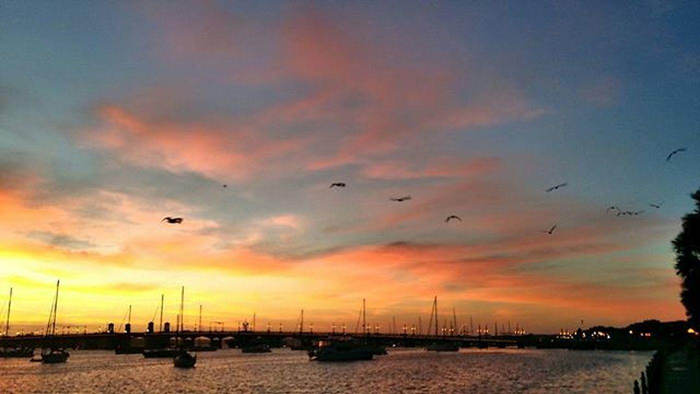 Birds flying by during the sunrise. Staugustine Harbourside Harbour Cloudporn Epicsky Clouds Sunrise Boat Sailboat Picoftheday Florida Bridgeoflions Saltlife Saltlife_sunrise Fireinthesky Birds