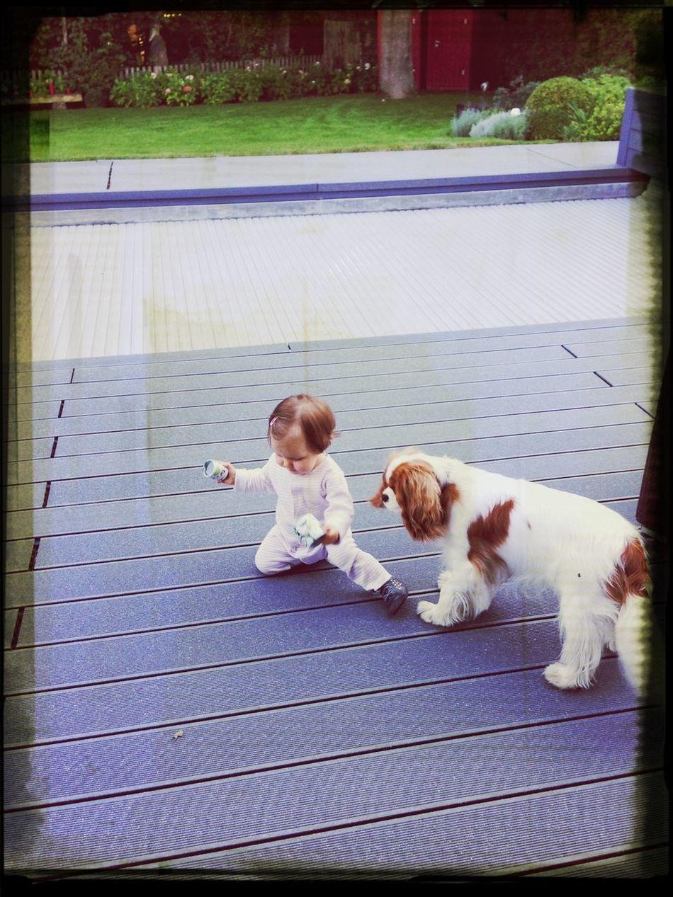 Mes deux bebes d'amour!!!