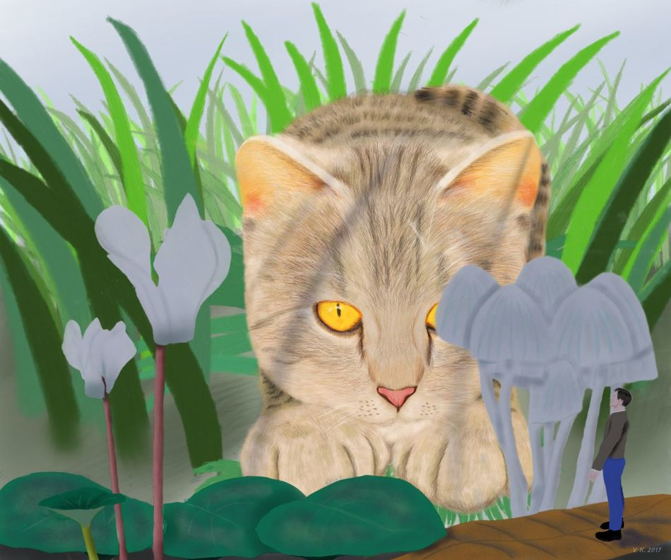 Curious cat - my new digital painting, created with Sketchbook for Android Feline Animal Themes Digital Art Digital Painting Surrealism Little Boy MYArtwork❤
