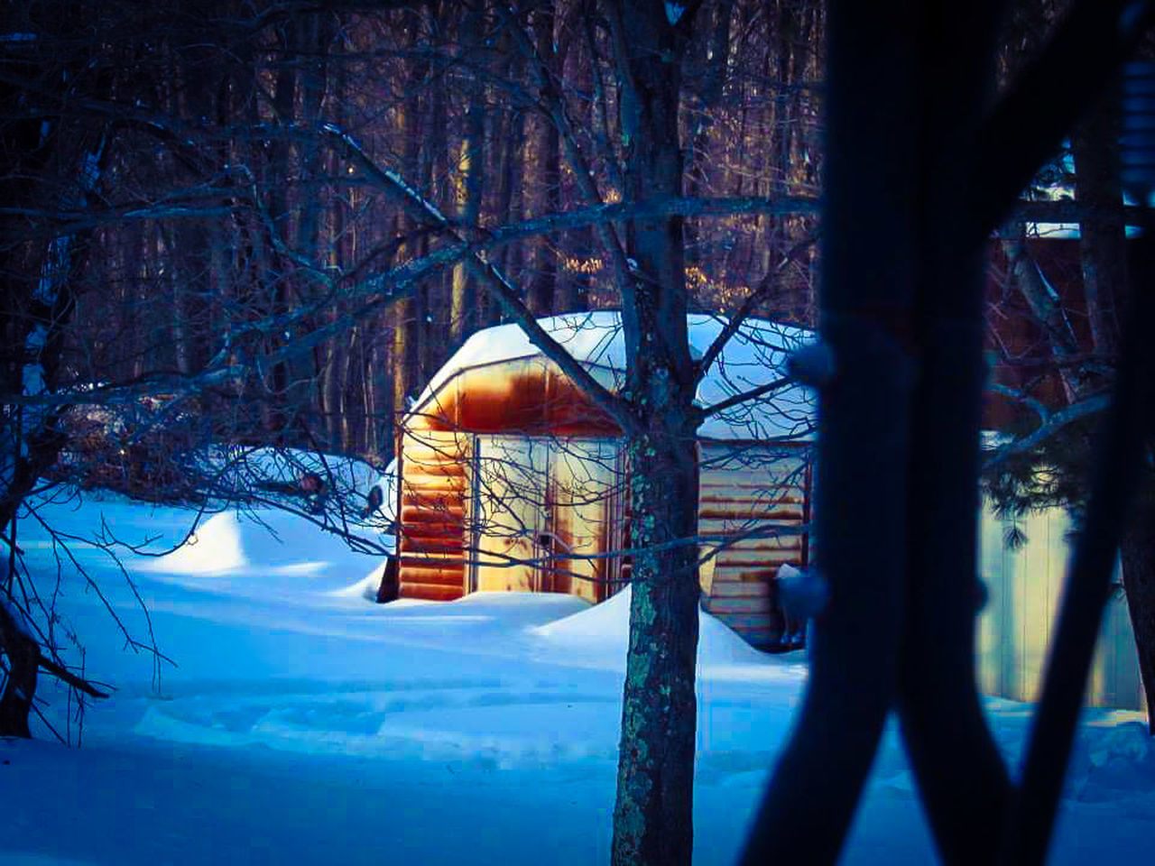 snow, winter, cold temperature, season, built structure, wood - material, covering, tree, architecture, weather, frozen, covered, nature, tranquility, bare tree, no people, railing, white color, day, outdoors