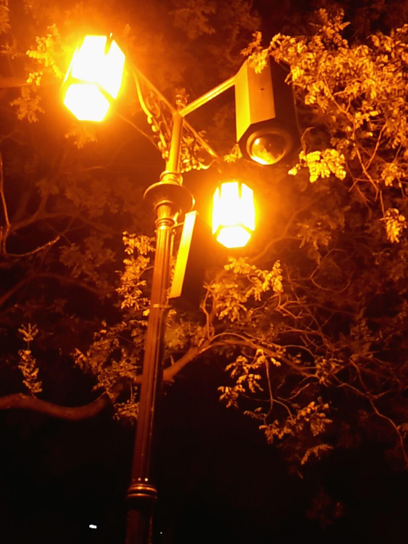 밤운동. 20분 동안 쉬지않고 달린 후 마지막 숨고르기 중. 너 cctv 맞지? 너는 나를 찍고 나는 너를 찍는다. Night Lights Park