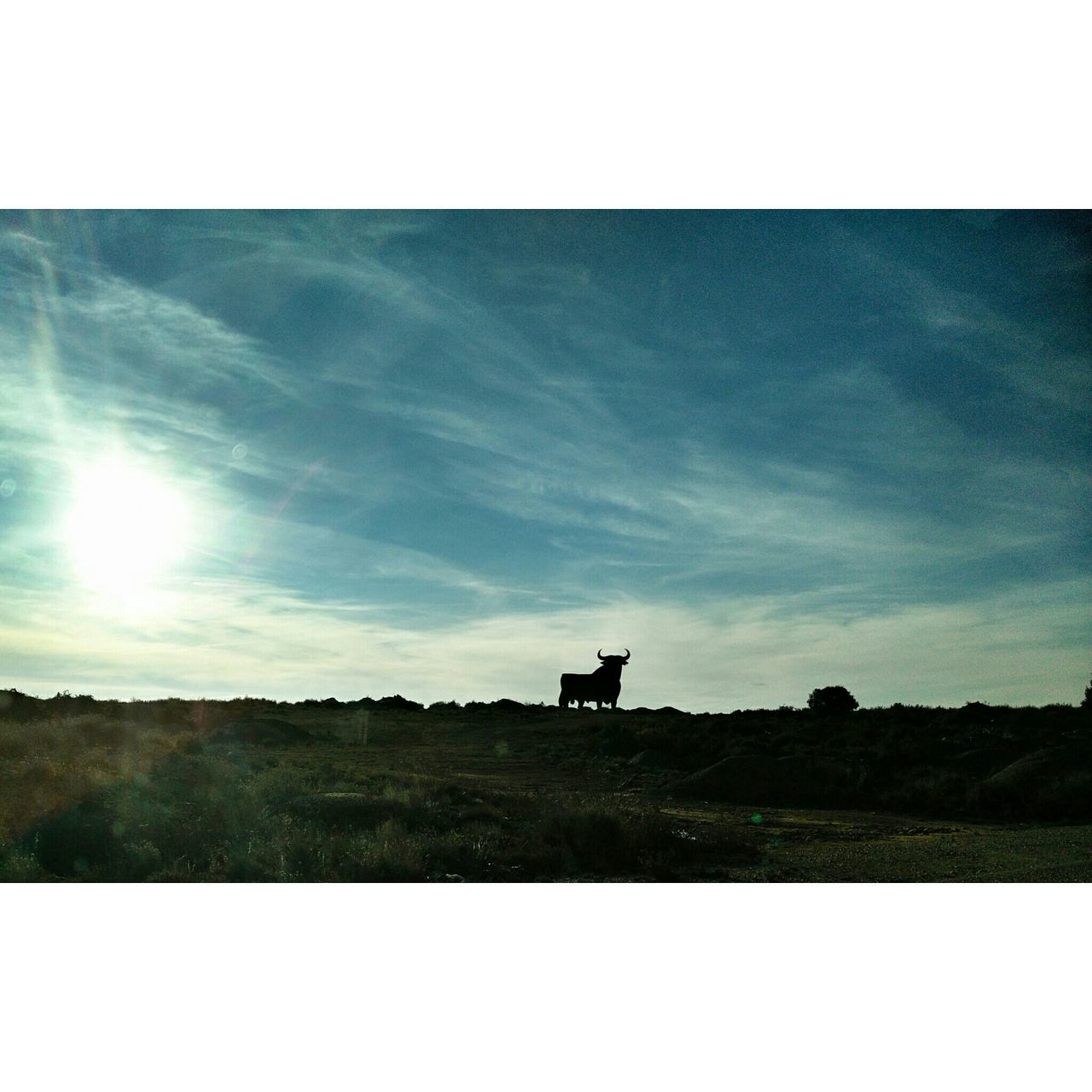 Travel Drive Castilla Wintercontraculture Enjoying Life Deepfreeze Landscape Darkness And Light