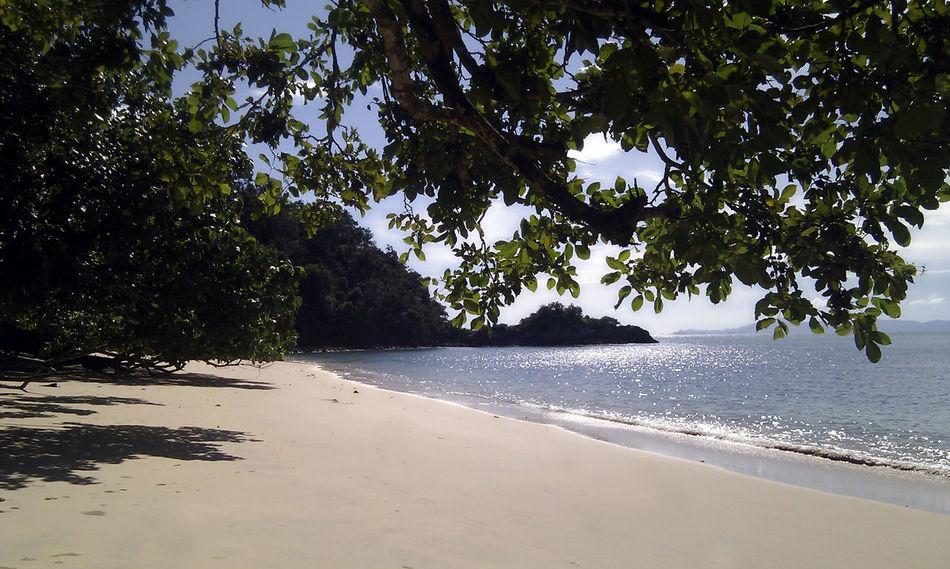 Andaman Sea Andamanislands Beach Beauty In Nature Coastline Day First Eyeem Photo Growth Horizon Over Water Idyllic Nature Outdoors Sand Scenics Sea Shore Sky Sunlight Tranquil Scene Tranquility Tree Vacations Water