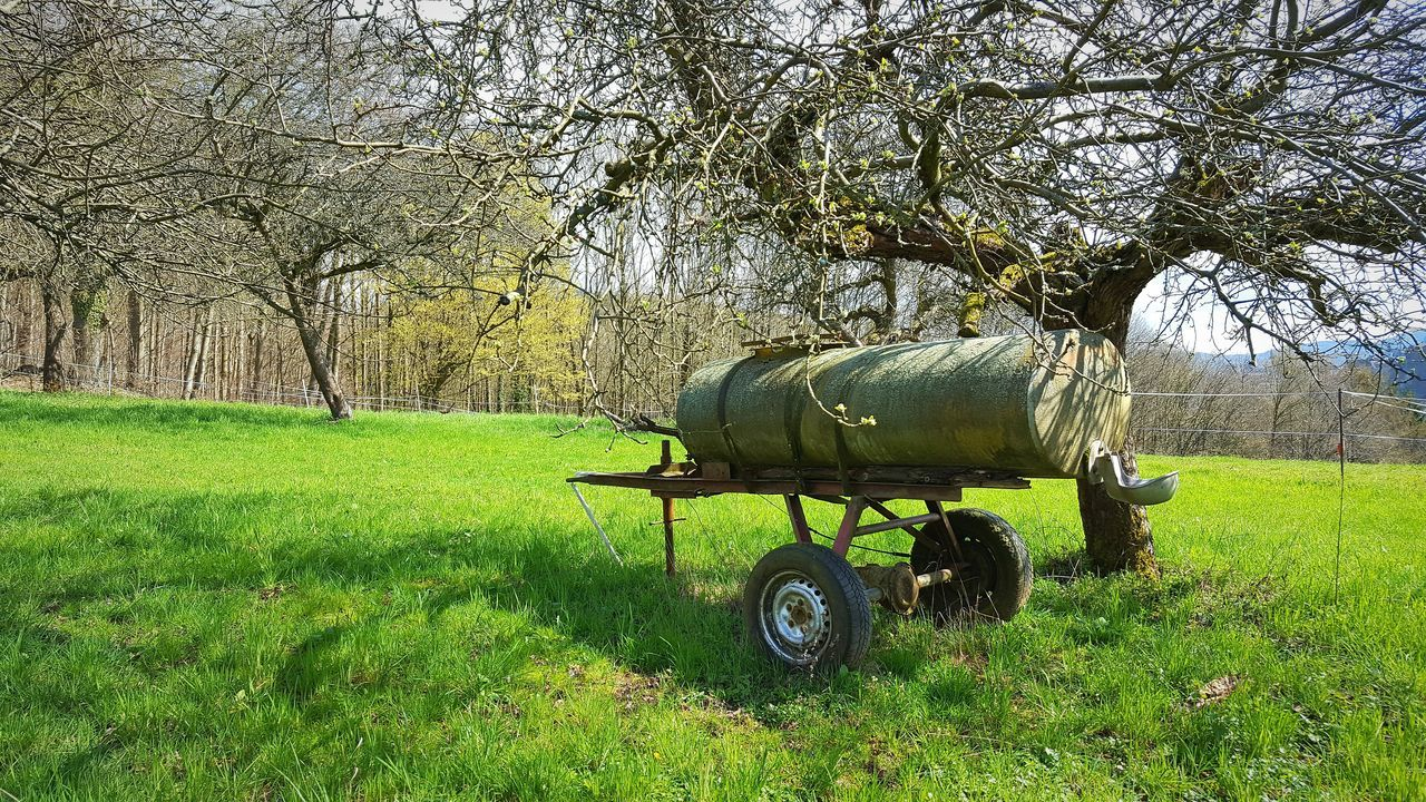 Grassfield Grass Grassland Trees Blossoms  Tank Nature Nature_collection Spring Springtime Odenwald  Trailer