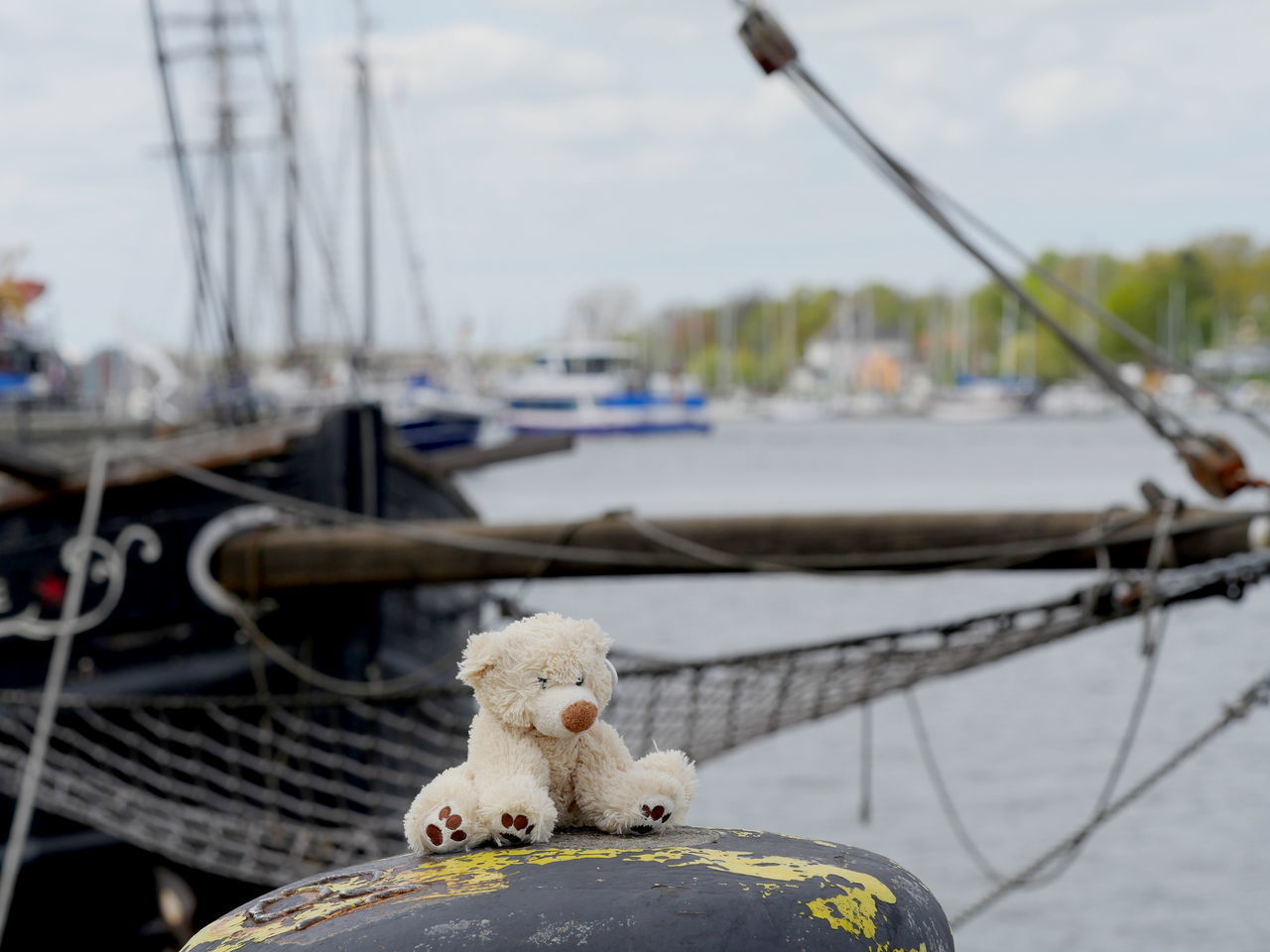 Focus On Foreground Harbor No People Outdoors Sailboat Sailing Ship Stuffed Toy Taking Photos Teddy Bear Transportation Live For The Story The Street Photographer - 2017 EyeEm Awards EyeEm Best Shots Exceptional Photographs Blurred Background Capture The Moment