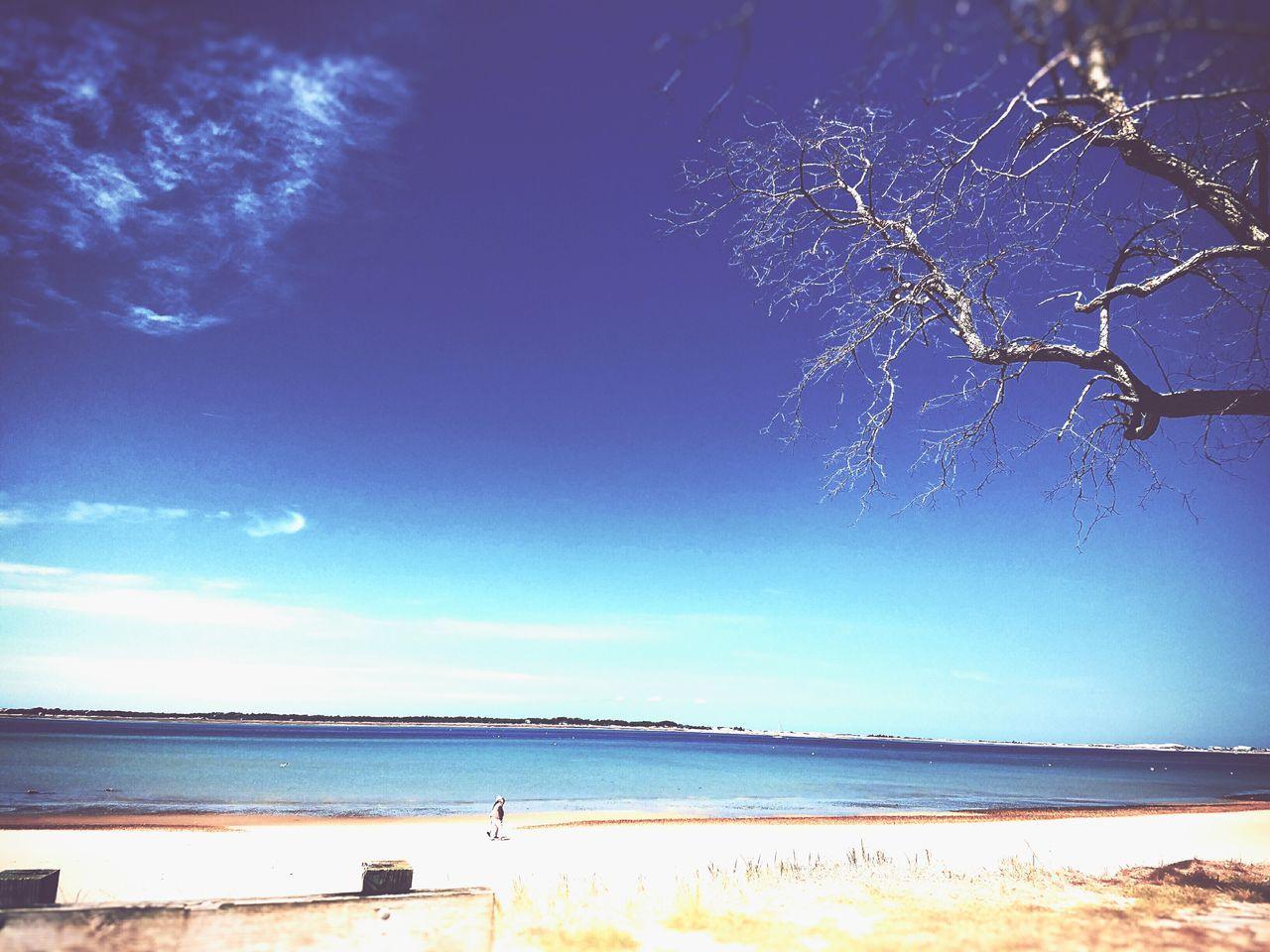 Beach Capecod Capecodlife Newengland Travel Explore