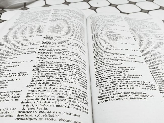 Studying French Dictionary Nosealife