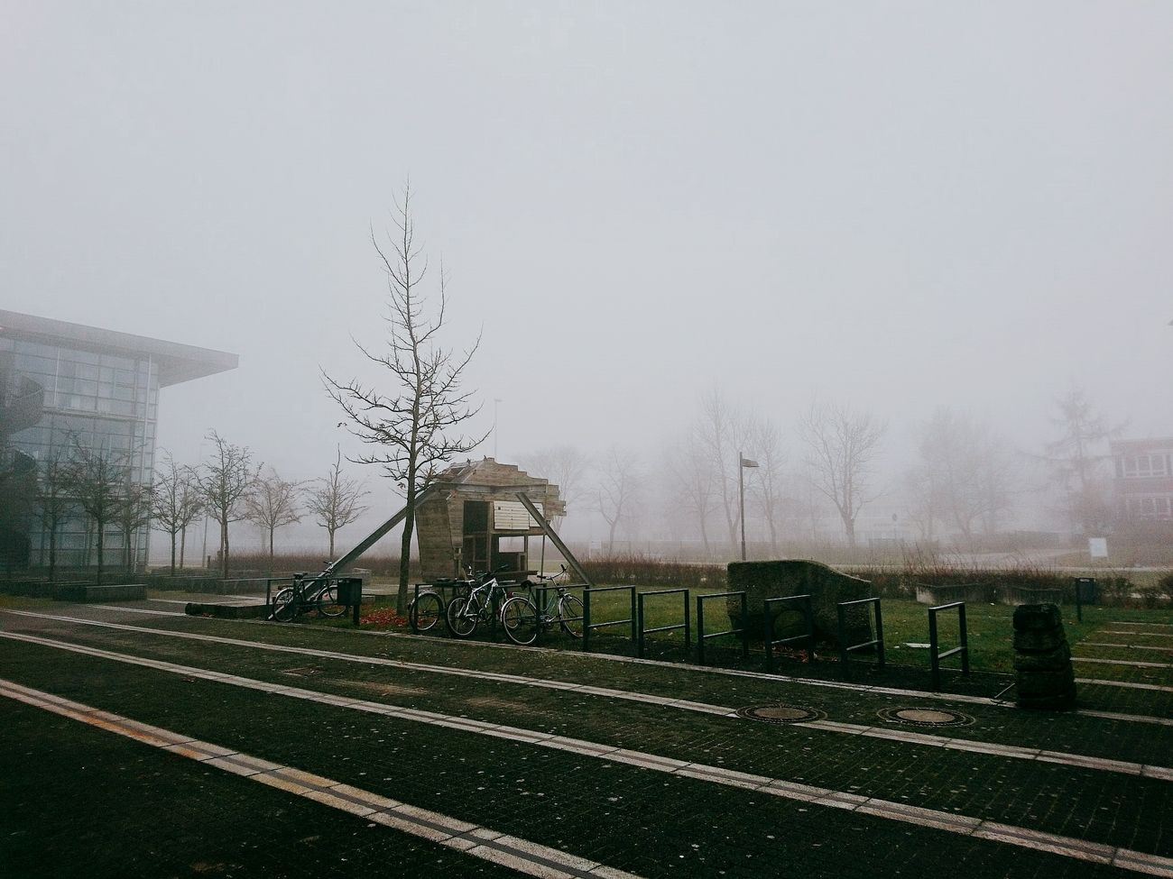 Foggy Day Infront Of The Building Trees Cannot See Front Stopby Structure Of Wood Bikes Smartphonephotography Cottbus Germany Btu Cottbus German Weather