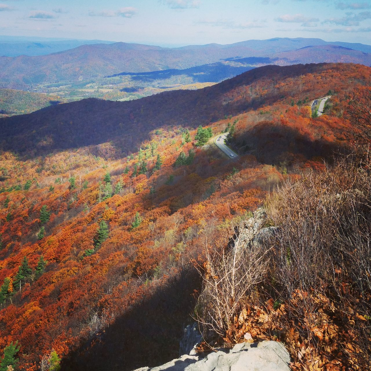 Fall Foliage Fall Leaves Shenandoah Shenandoahnationalpark Blue Ridge Mountains Travel Destinations Clouds Fall Colors Mountains Cloud - Sky Beauty In Nature Outdoors Tree Mountains