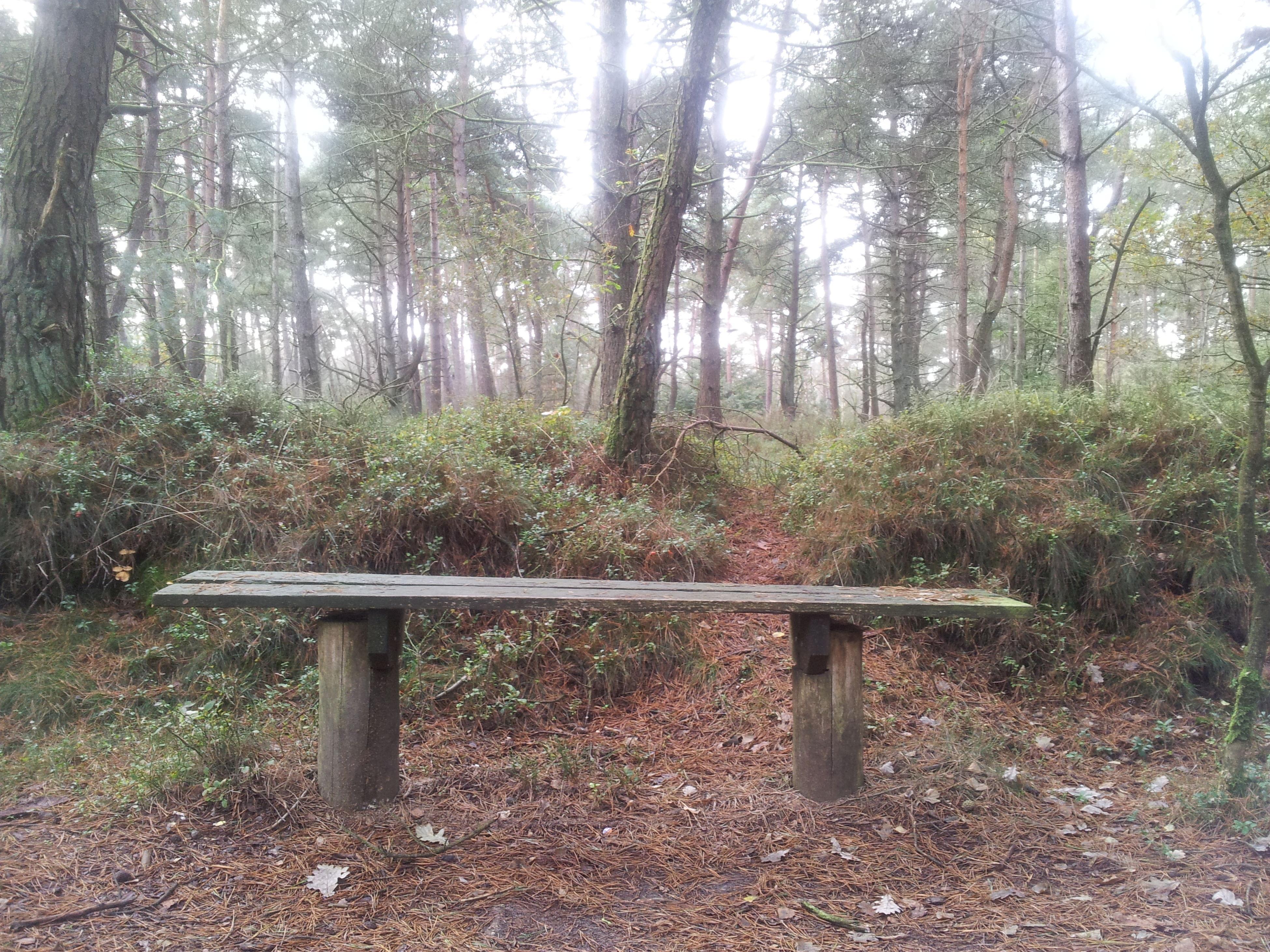 Nature Rest TheMinimals (less Edit Juxt Photography)
