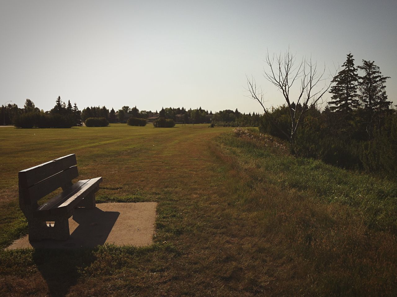 View Of Bench In Park Against Sky