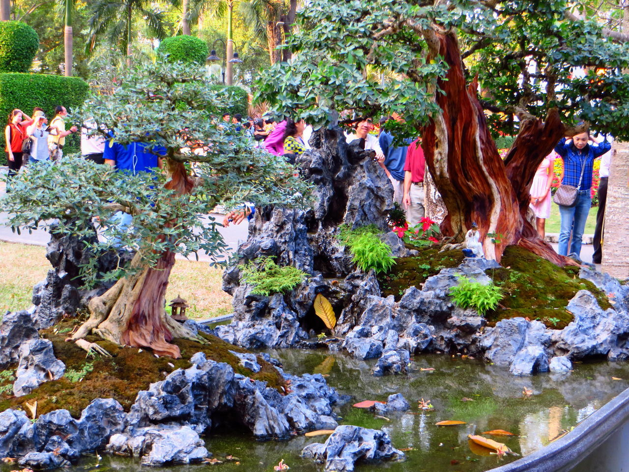 water, tree, nature, large group of people, outdoors, men, day, real people, people, adult, adults only