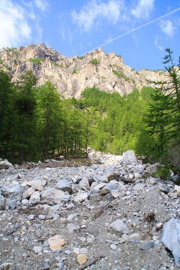 Parco naturale Val Troncea, Italy. Adventure Alpi Cozie Alps Beauty In Nature Explore Hike Italy Landscape Majestc Mountain Mountain Range Mountais Nature Outdoors Piedmont Piemonte Scenics Sky Sunlight Tranquility Trees Vertical