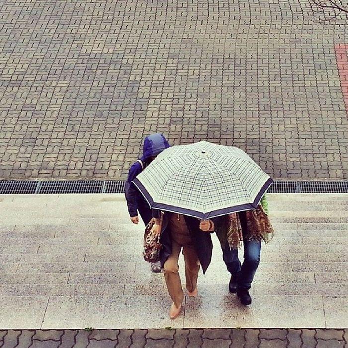 비 오는 날 Rainy_day Rain