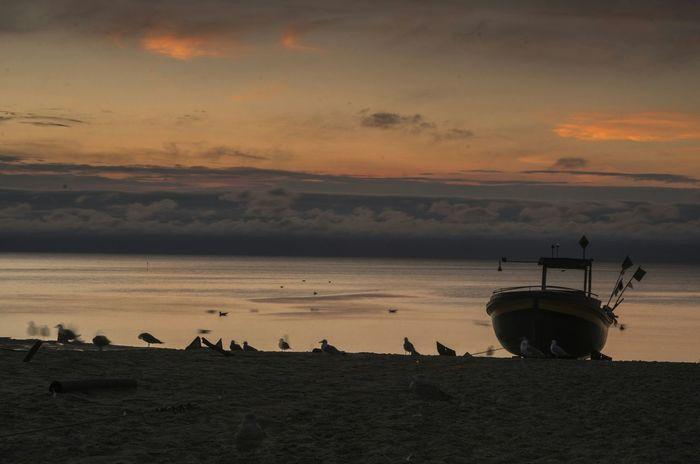Sunrise in Gdynia, Poland Baltic Coast Baltic Sunrise