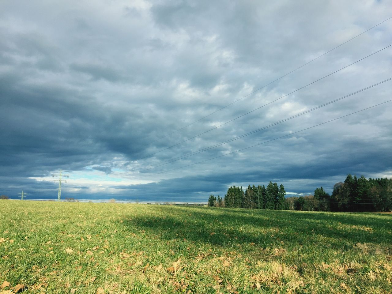 field, nature, beauty in nature, landscape, cloud - sky, sky, tranquility, scenics, tranquil scene, grass, no people, agriculture, day, rural scene, outdoors, cable, tree, growth, electricity pylon