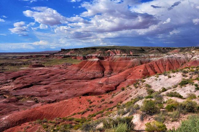 Summer Memories 🌄 from the Painted Desert in the Petrified Forest National Park Beautiful Nature EyeEm Nature Lover EyeEm Best Shots Nature_collection Nature's Wonder