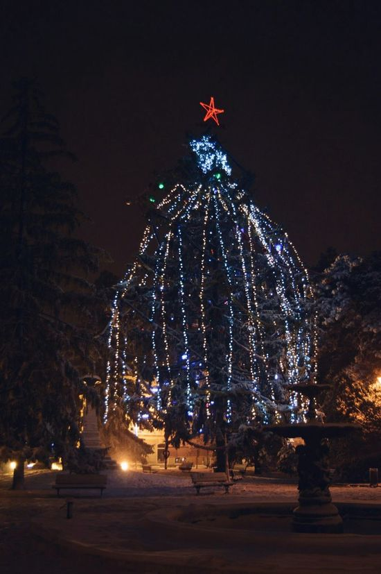 Nikon Nikon D3200 Nikonphotography NikonLife Christmas Tree Braila Lights Nightphotography Night Lights Vscocam