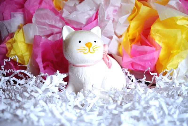 Cat Kitty Kitty Cat Girl Girly Girly Things  Girlygirl Love